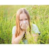 Ambrozia: Aparatul de aerosoli amelioreaza ambrozia!