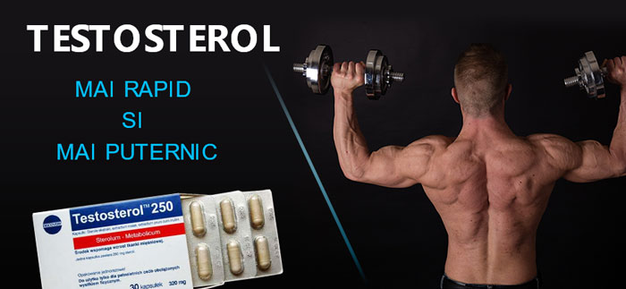 terstosterol